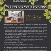 Harveys Polypin Care Guide