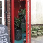 Phone box Greenhouse