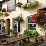 Hanging Baskets, Bricklayers, Chipstead