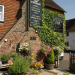 Rose and crown back garden