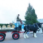 Harveys-Dray-Brighton-Pier-2