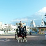 Harveys-Dray-Brighton-Pier-4