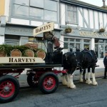 Harveys-Dray-Golden-Cannon