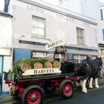 Harveys-Dray-Lord-Nelson-4