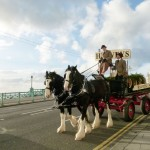 Harveys-Dray-Marine-Parade-6