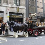 Harveys Dray Cart London Wine Lodge